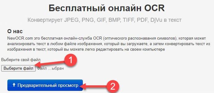 Выбираем файл и загружаем картинку в Free Online OCR
