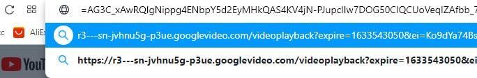 вставляем в адресную строку браузера код на видеоролик в mp4
